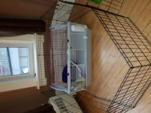 22x36 Inch cage with accessories and x pen