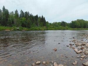 Gorgeous Waterfront Land in Renous, NB  MLS® # NB018517