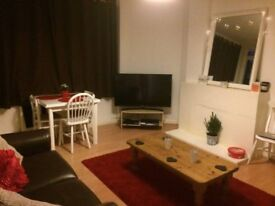 Double room available in friendly, homely flat! Less than 5 mins from Clapham South!