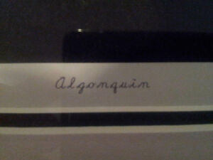 """Limited Edition """"Algonquin"""" by Andrew Collett London Ontario image 3"""