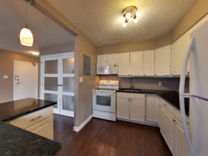 Downtown Condo Completely Redone