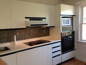 KITCHEN CABINET WALL with APPLIANCES