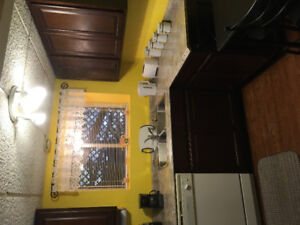 Fully furnished one bedroom apartment in Clarenville