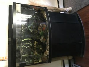 50 gal bow front all incl