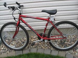 Infinity Telluride 21 speed mountain bike
