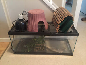 Snake enclosure complete with everything!