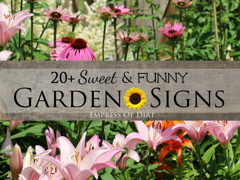 20 Sweet Funny Garden Signs – Garden Plant Signs