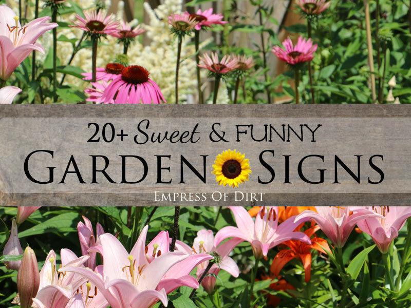20 Sweet Funny Garden Signs eBay