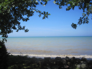 Lakefront Cottage for Rent in Point Clark