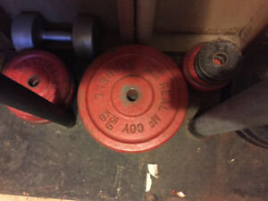 200lbs + of free weight and bars