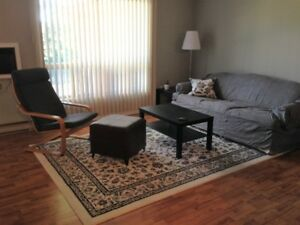 Female student roommate - Modern three bedroom west-end condo