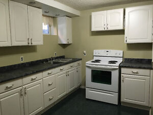 Renovated Spacious 2 Bedroom in Acadia Available NOW!!!