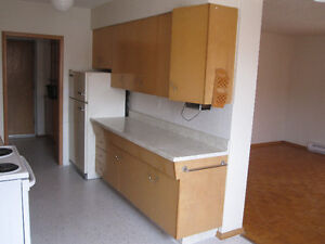 Large Bright Spacious Two Bedroom near Sherman and Fennell