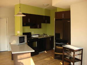 YOU & YOUR 4 FRIENDS WILL LOVE 74 MARSHALL Kitchener / Waterloo Kitchener Area image 4