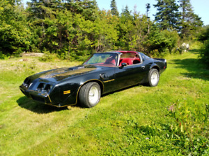 1980 T-bar Trans am (appraised​ at at $29500...offers)