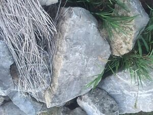 Landscaping rock over 100 pieces $1500 Cambridge Kitchener Area image 8