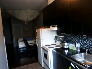 Cute Bachelor / 2.5 Near Langelier Metro | Available now