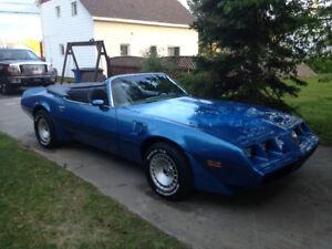 Pontiac trans am convertible 1981