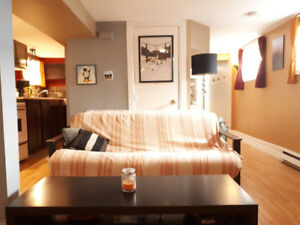 Stylish Fully Furnished Basement Bachelor Apt