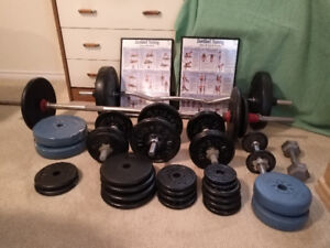 Weight set with curl bars