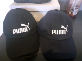 2 puma caps