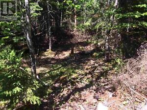 land / lot 771 West Porters Lake Road for sale