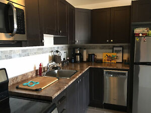 Newly renovated Hintonburg 2 bedroom - Move in Oct 1