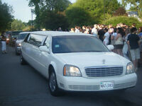 Limousine in the Greater Fredericton and area