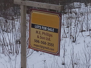 Land for sale on Whittaker Road