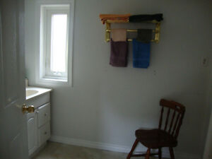 Fully Furnished Apartment Belle River by the Lake avail March 1 Windsor Region Ontario image 3