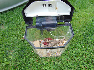 1 small Aquarium 16x11x10 gallons 5. with cover and light and f