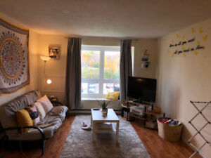 1 Bedroom Spacious and Bright Apartment