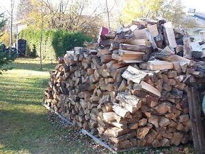 Bois chauffage foyer (firewood)