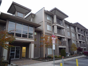$85 /1br -800ft2 *Insanely Great Super Suites in Chilliwack (VA)