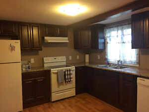 Centre City 3 bedroom house for rent