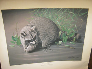 Ducks Unlimited Artist 1995- Numbered Print by Ann Miller