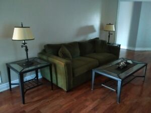 Luxurious Fullsize Couch  $250