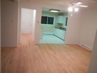 House for rent with large storage area on Navan Rd.
