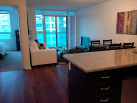 Downtown Fully Furnished 1 Bedroom + Den, Financial District