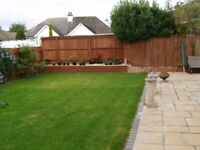 fresh cleans cleanings & gardening services great rates