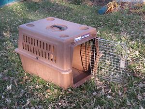 $35 · REDUCED! PLASTIC DOG CRATE Regina Regina Area image 2