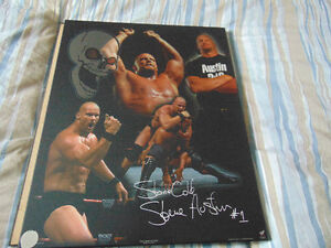 Stone Cold Steve Austin Laminated Poster
