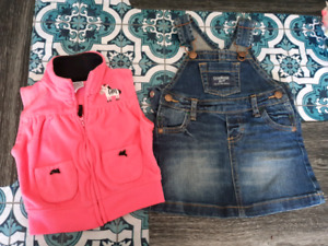 Baby girl clothes lot 9 month