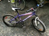 """For Sale a pair of 20"""" Girls Mountain bikes like new"""