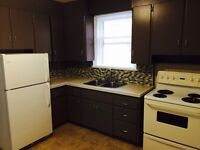 All Inclusive spacious fresh 2 bedroom