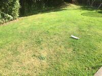 WANTED! Grass Cutter