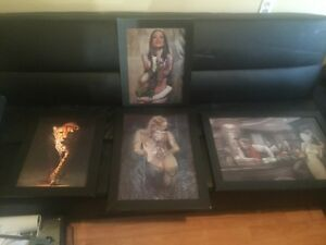 Changing picture 3D framed art