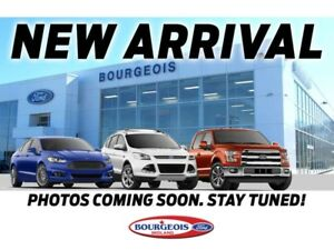 2018 Ford F-150 *DEMO* XLT 5.0L V8 302A