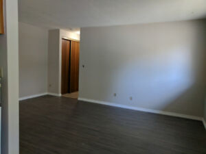 Beautiful One Bedroom Apartment for Rent