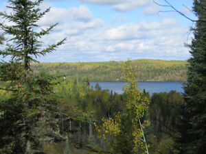 Oliver Lake View